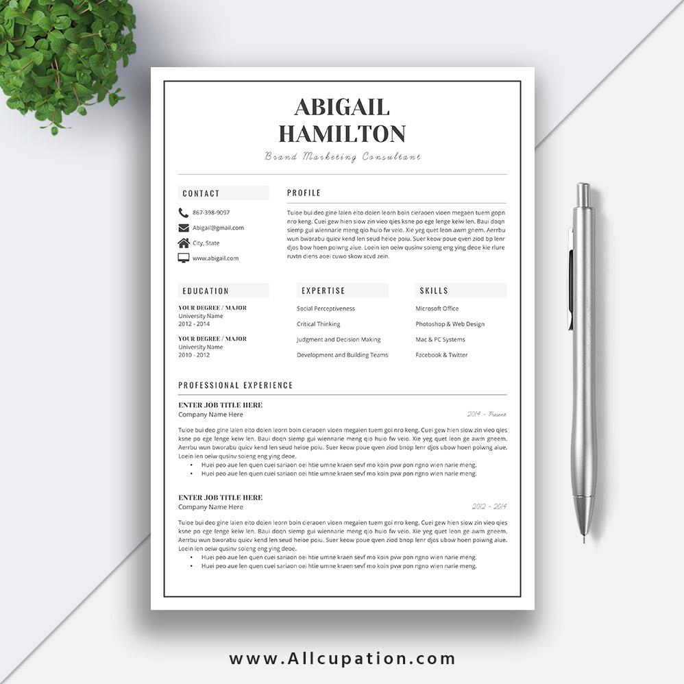 black and white resume template  2 pages word resume  cv