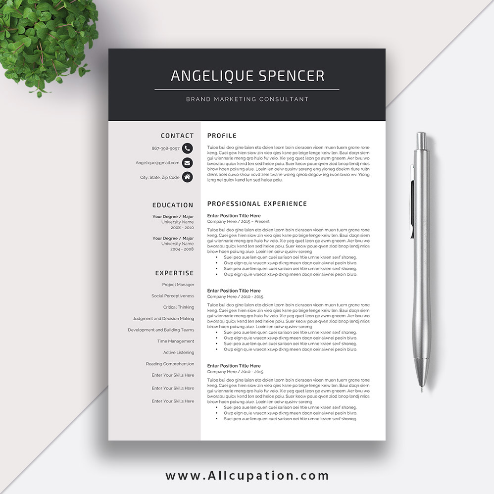 Simple Resume Template Modern Curriculum Vitae Template Cv