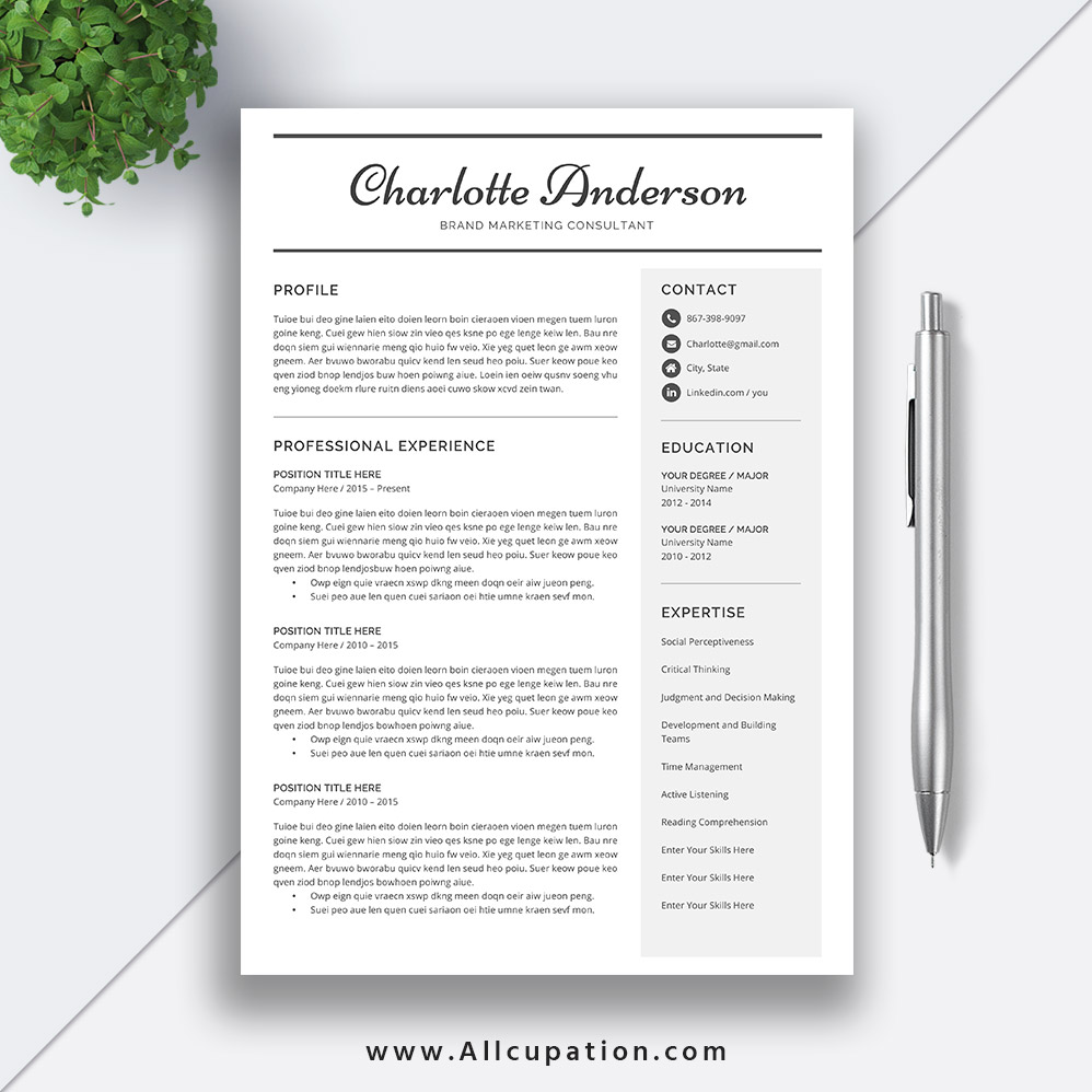 2019 Job Resume Template Word, Curriculum Vitae Template