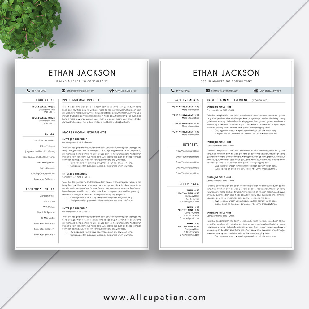 Elegant Resume Template ...