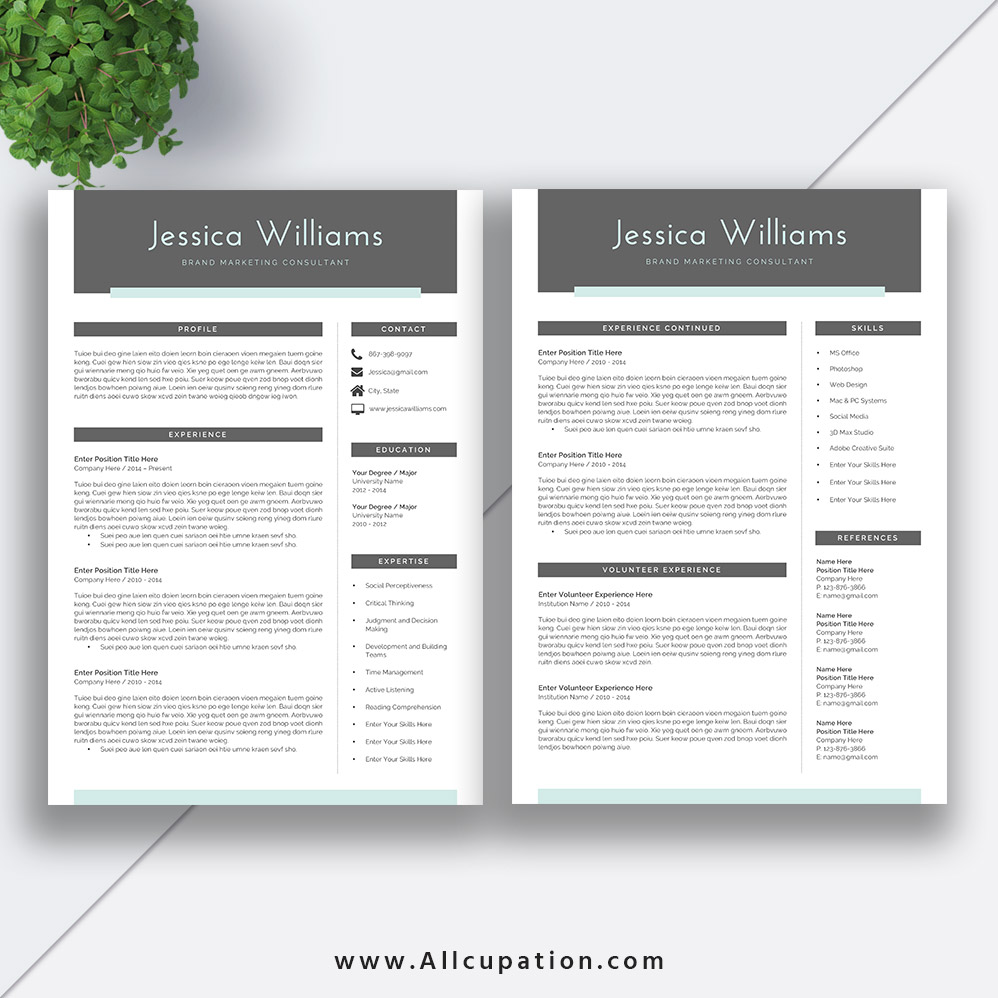 Creative And Beautiful Resume Template ...