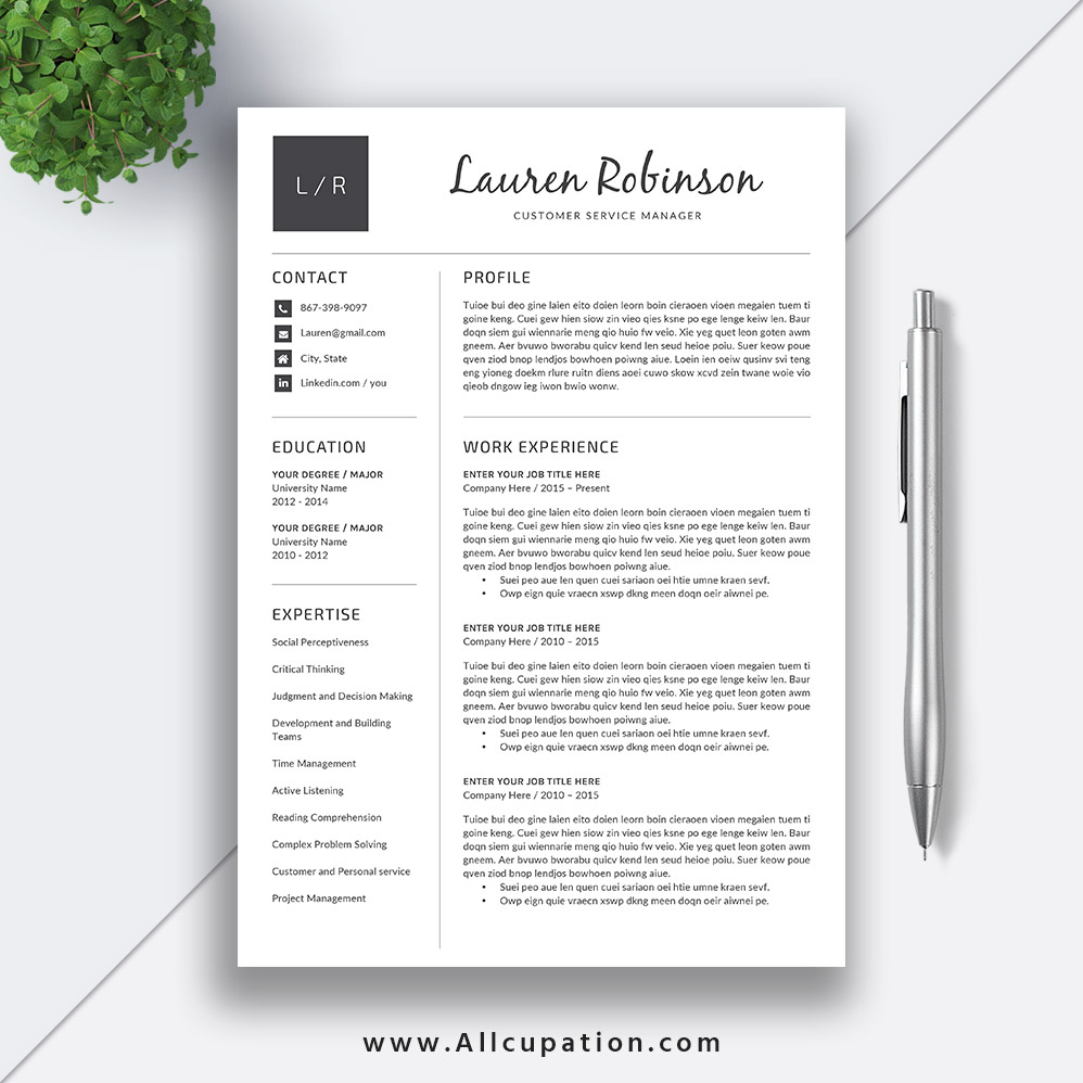 basic resume template  modern cv template  job resume word