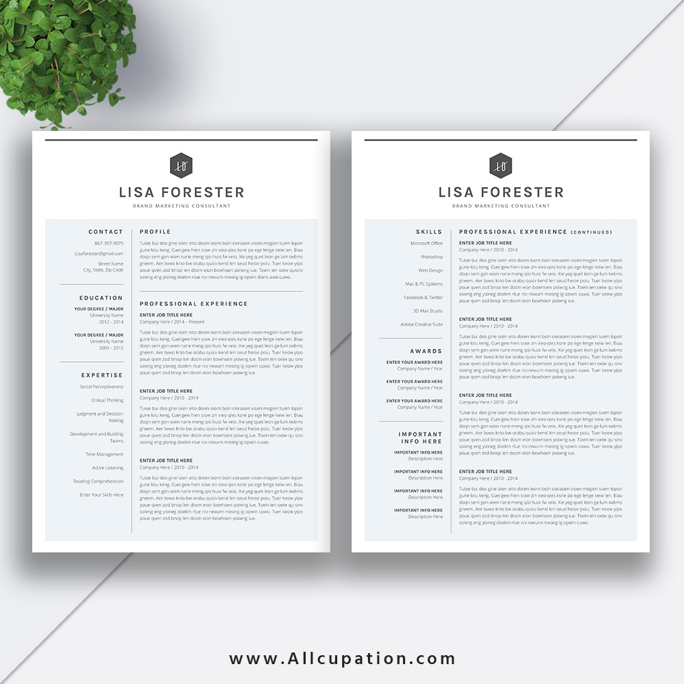 Clean And Simple Resume Template 2020 2 Pages Modern Cv
