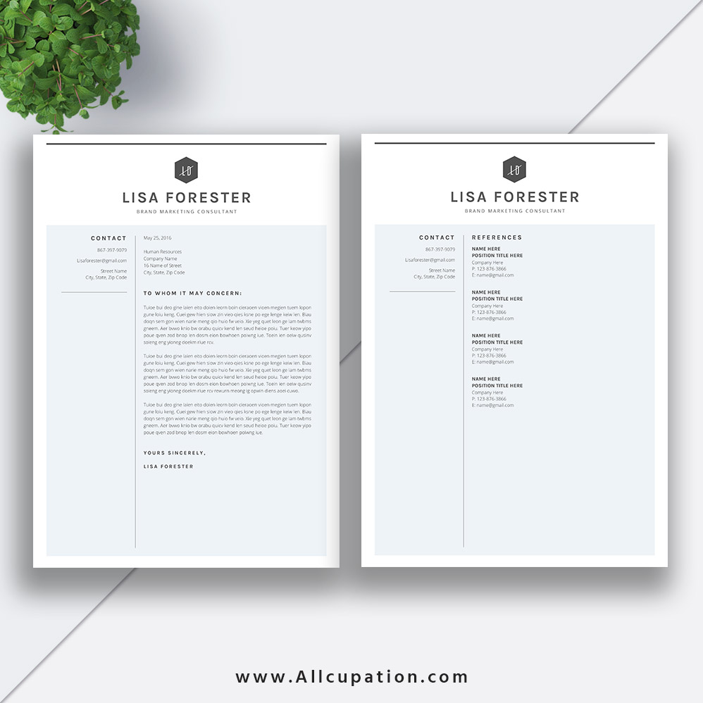 Clean And Simple Resume Template 2019, 2 Pages Modern CV