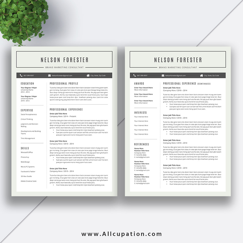 Student Resume Template 2019 Curriculum Vitae Template Word Simple