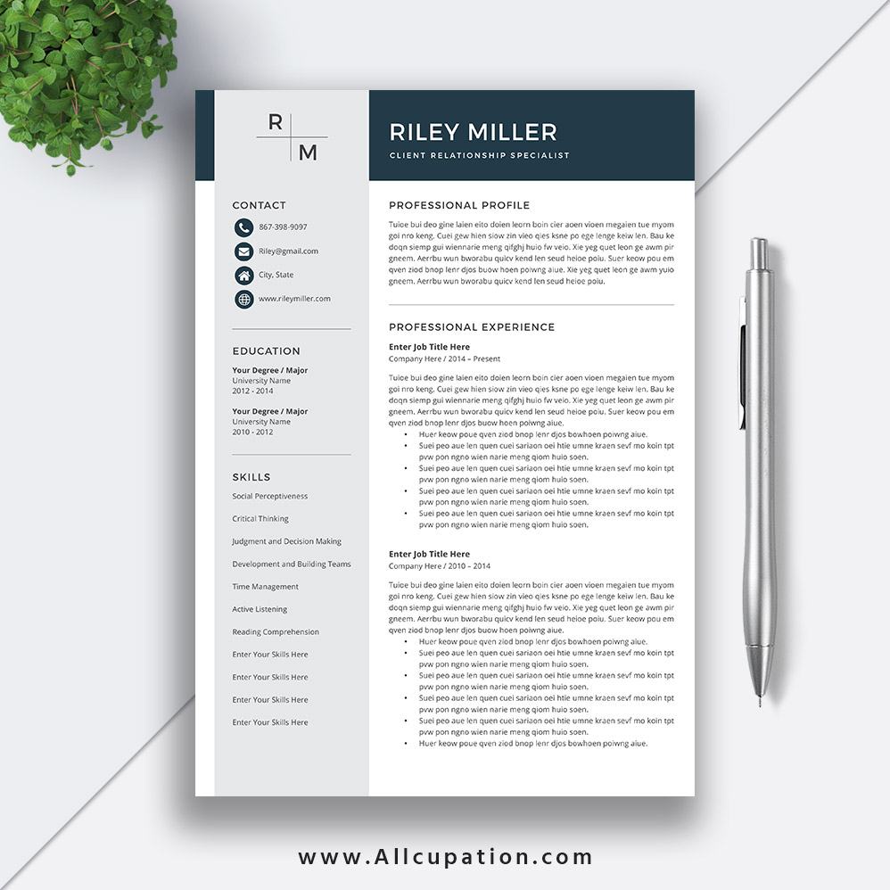 2019 Editable Professional Resume Template Curriculum Vitae Word