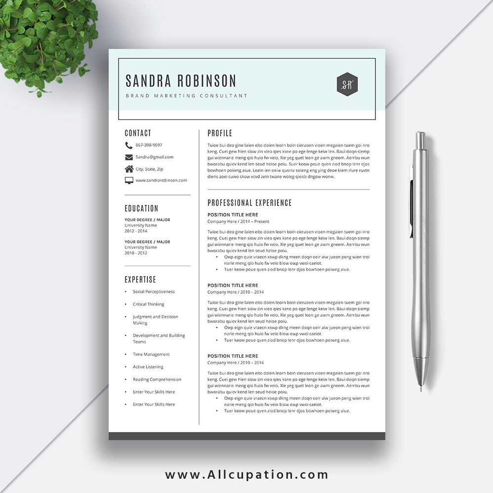 Simple Resume Template, Curriculum Vitae, Professional and Creative ...